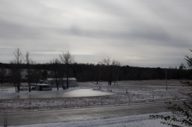 1-6-17 Snow-11
